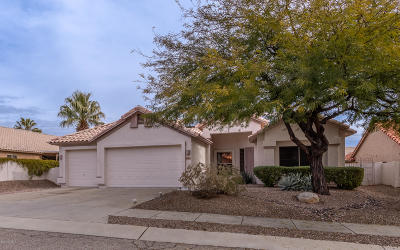 Tucson Single Family Home For Sale: 7537 E Camino Amistoso