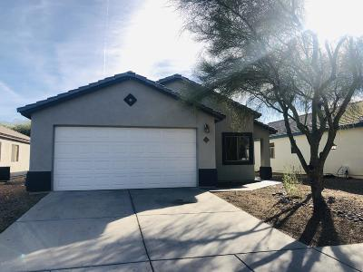 Tucson Single Family Home For Sale: 2417 W Monet Way