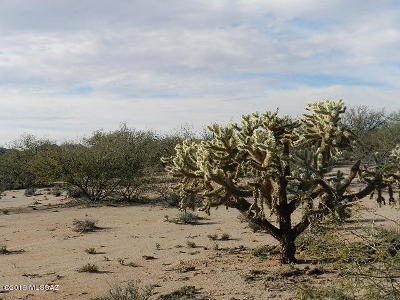 Tucson Residential Lots & Land For Sale: 13655 W Park Road