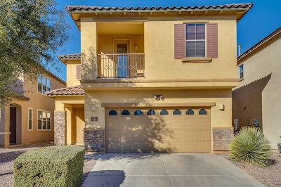 Sahuarita Single Family Home Active Contingent: 535 E Calle De Ocaso