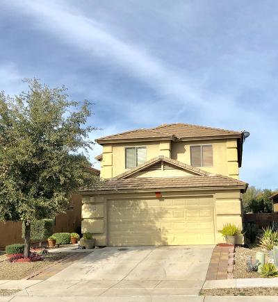 Single Family Home For Sale: 4139 E Agate Knoll Drive