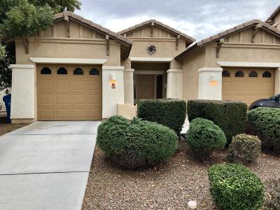 Pima County Single Family Home For Sale: 245 W Calle Gota