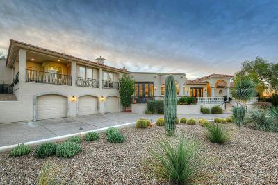 Tucson AZ Single Family Home For Sale: $1,895,000