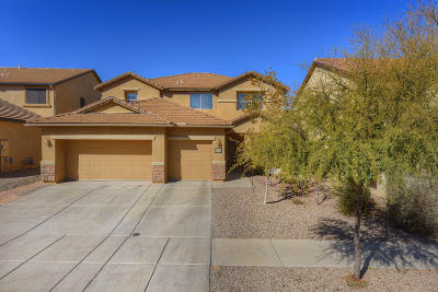 Tucson Single Family Home For Sale: 5880 S Copper Hills Drive