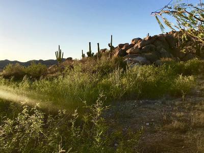 Residential Lots & Land For Sale: 1525 W Tortolita Mountain Circle #285