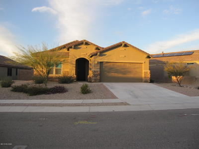 Vail Single Family Home For Sale: 10338 S Tea Wagon Way