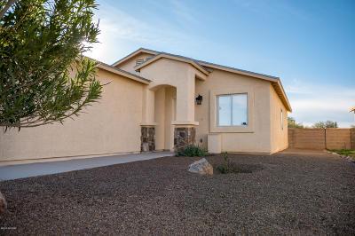 Tucson Single Family Home For Sale: 170 E Medina Road