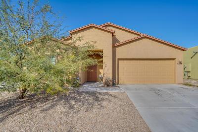 Tucson Single Family Home For Sale: 5771 E Camino Del Agua
