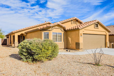 Sahuarita Single Family Home Active Contingent: 546 W Calle Franja Verde