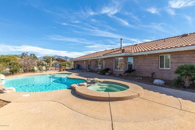 Tucson Single Family Home For Sale: 4700 W Flying Diamond Drive