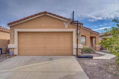 Tucson Single Family Home For Sale: 1543 S Dakota Sky Court