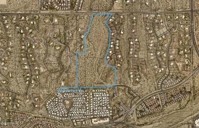 Pima County Residential Lots & Land For Sale: Naranja Drive