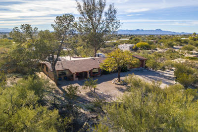 Tucson Single Family Home For Sale: 4130 N Camino Gacela