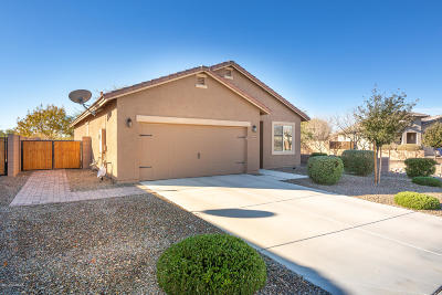 Marana Single Family Home For Sale: 11415 W Spear Shaft Drive