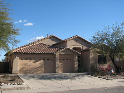 Tucson Single Family Home For Sale: 3395 S Prism Sky Drive
