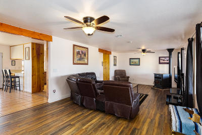 Marana Single Family Home For Sale: 7100 N Nelson Quihuis Road