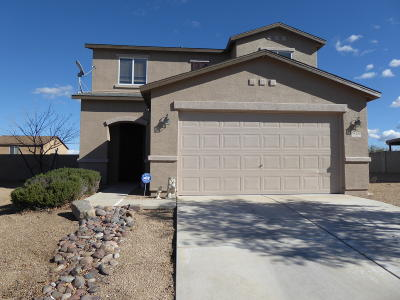 Sahuarita Single Family Home For Sale: 18589 S Avenida Santa Deborah