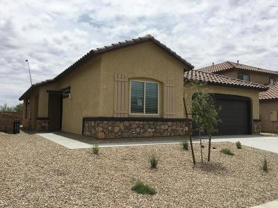 Marana Single Family Home For Sale: 11069 W Riverton Drive