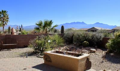 Green Valley Single Family Home For Sale: 1071 W Calle Artistica