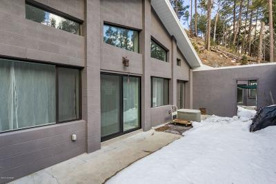 Mt. Lemmon Single Family Home For Sale: 11021 E Turkey Run Road