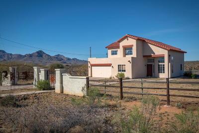Rio Rico Single Family Home For Sale: 1720 Circulo Alameda