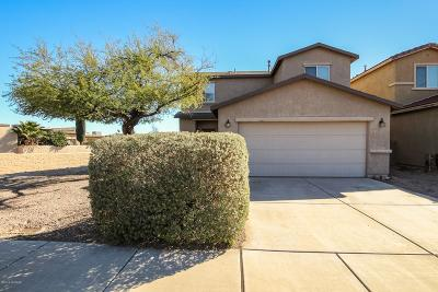 Single Family Home For Sale: 1009 W Seashell Court