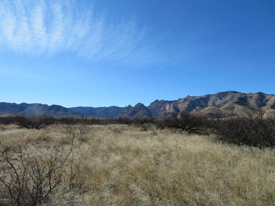 Cochise Residential Lots & Land For Sale: N Panorama Way