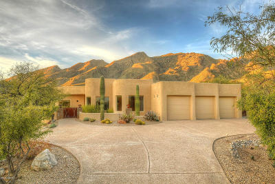 Tucson Single Family Home For Sale: 6641 N Paseo Tamayo