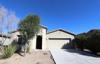 Sahuarita Single Family Home For Sale: 1099 E Empire Canyon Lane