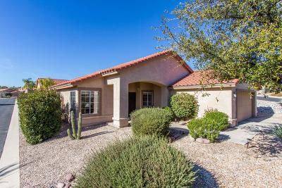 Tucson Single Family Home For Sale: 2465 W Tom Watson Drive