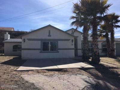 Rio Rico Single Family Home For Sale: 163 Topo Court