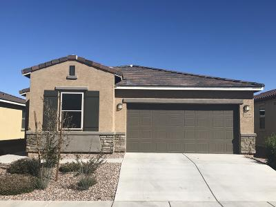 Tucson Single Family Home Active Contingent: 6599 E Via Jardin Verde