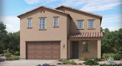 Sahuarita Single Family Home For Sale: 15654 S Camino Oculi