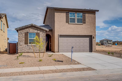 Sahuarita Single Family Home For Sale: 917 W Calle Tipoy W