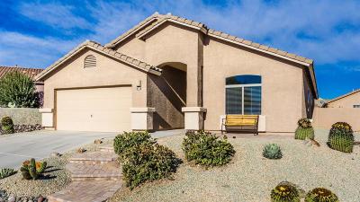 Single Family Home For Sale: 670 W Via Rosaldo