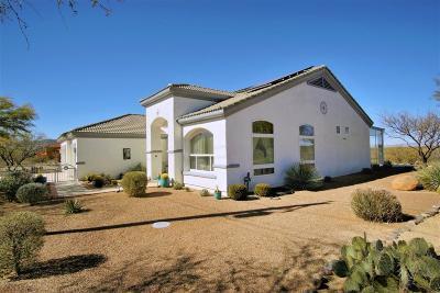 Rio Rico Single Family Home For Sale: 278 Camino Josefina