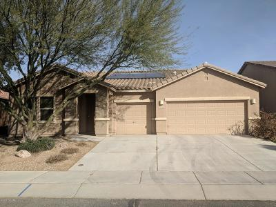 Sahuarita Single Family Home For Sale: 1115 E Cotton Field Lane