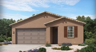 Sahuarita Single Family Home For Sale: 15642 S Camino Oculi
