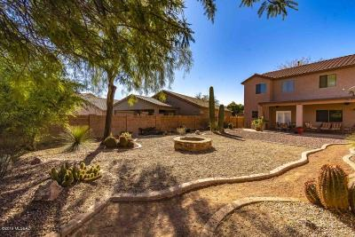 Tucson Single Family Home For Sale: 3404 N Sand Creek Court