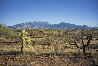 Green Valley Residential Lots & Land For Sale: 303 E Corte Tierra Morena #13