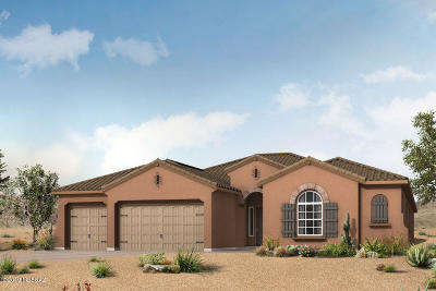 Pima County Single Family Home For Sale: 495 E Sweet Clover Court