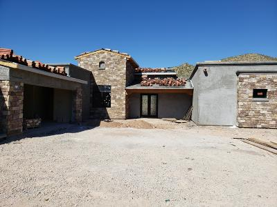 Oro Valley Single Family Home For Sale: 14631 N Granite Peak Place