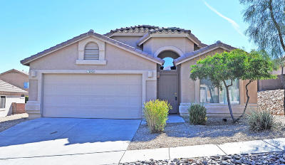 Single Family Home Active Contingent: 13252 E Mesquite Flat Spring Drive