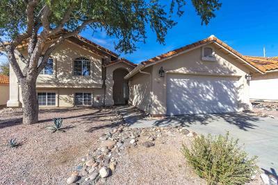 Tucson Single Family Home For Sale: 343 E Streams Edge Place