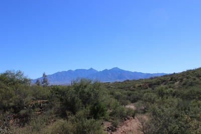 Green Valley Residential Lots & Land For Sale: 4142 W Calle Uno #25D