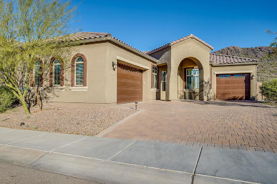 Marana Single Family Home Active Contingent: 9576 N Saguaro Breeze Way