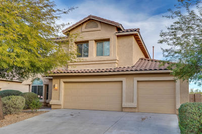 Tucson Single Family Home For Sale: 7962 N Blue Brick Drive