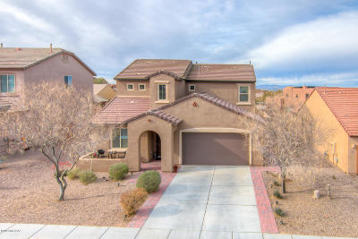 Vail Single Family Home For Sale: 678 S Desert Haven Road