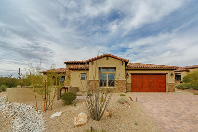 Pima County Single Family Home For Sale: 420 W Echo Point Place