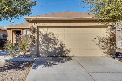 Single Family Home For Sale: 3839 E Painted Tortoise Street